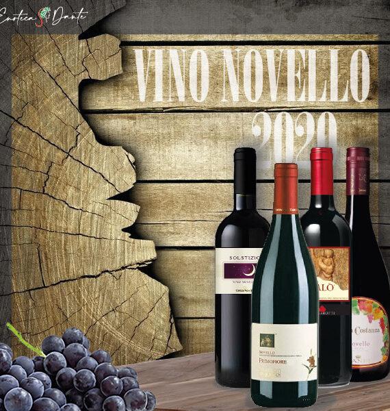 Novello600-01